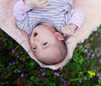 auxerre, photographe,bébé, Yonne, naissance