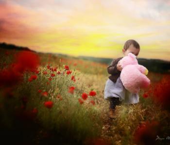 Photographe bébé enfant yonne auxerre tonnerre